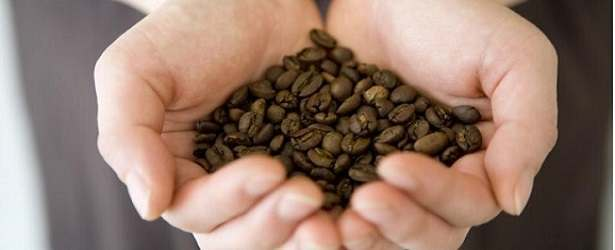 Acidic Properties In Roasted Coffee