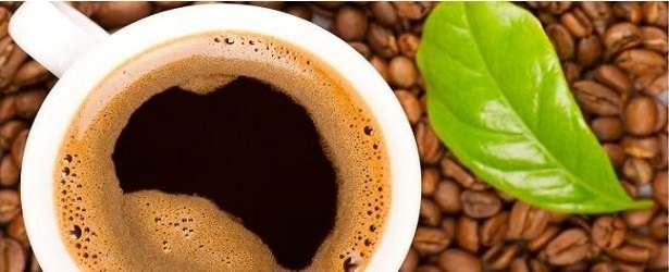 How You Can Make Green Coffee Bean Extract615