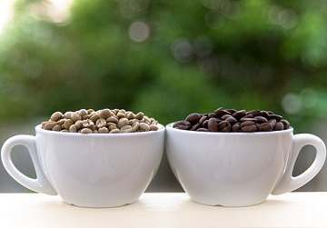The Side Effects Of Green Coffee Extract