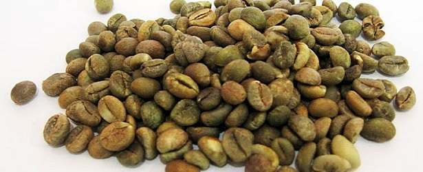 Why Take Green Coffee Bean Extracts?